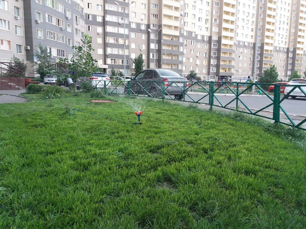 полив газона мира 3 1