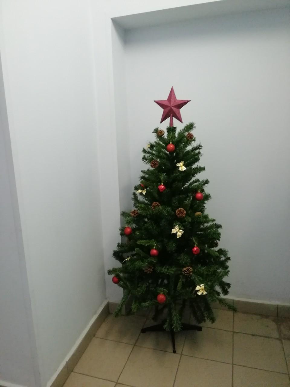 Новогоднее оформление фойе первых этажей МКД Салмышская 47