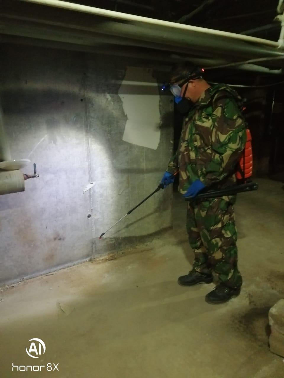 Салмышская 43/5 ежемесячная дератизация и дезинсекция подвала